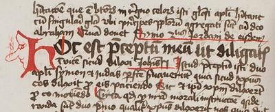 Bordesholmer Handschrift